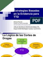 MICHAEL REMPEL_Estrategias Basadas en La Evidencia Para TTD