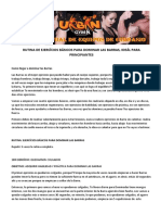 RUTINA DE EJERCÃ-CIOS BÃ-SICOS para Dominar las Barras.docx