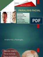 Anatomía y Fisiología Nervio VII