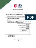 Formato Fp011 - Informe Final Del Alumno
