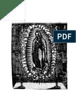 Imagen de La Virgen Maria Madre de Dios de Gvadalupe Milagrosamente Aparecida en La Ciudad de Mexico