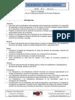 175033696-PLAN-DE-CONTINGENCIA-Y-ATENCION-A-EMERGENCIAS.docx