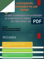Sistemas Operativos Expo