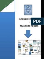 Manual Enfoque de Procesos y Analisis de Riesgo