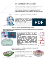 Material Gentico Extranuclear Texto Informativo