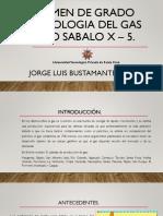 Defensa Interna - Jorge Luis Bustamante Pozo Sabalo X-5 EXAMEN de GRADO