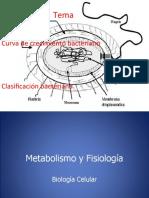 Clasificacion y Curva de Crecimento Bacteriano