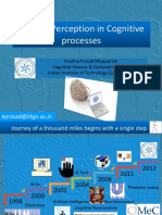 Visual Perception in Cognitive processes