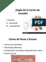 Microbiología de La Caries de Esmalte