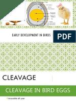 Early Development in Birds