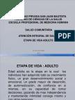 14 Clase a.i. Adulto s. c. 2015-1