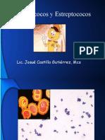 Staphylococcus & Streptococcus