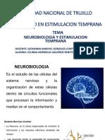 NEUROBIOLOGIA DIAPOSITVAS