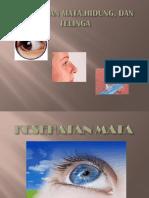 Kesehatan Mata, Telinga, Hidung Dan PENGOBATAN SEDERHANA