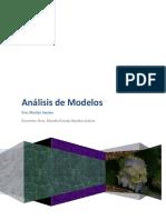 67131822-Analisis-Modelos.pdf