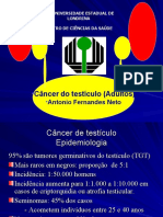 Câncer do testículo_Adultos
