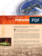 Petrochemical_Nov11.pdf
