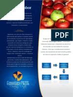 Información Inicial Estratégica Mente.pdf