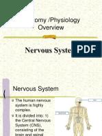 NervousSystem(6)&(7)