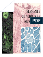 14_Patologia tesutului muscular_1 [Compatibility Mode].pdf
