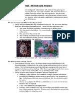 Cancer Info Sheet