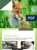 Zoológico metropolitano bea giuli fran.pptx