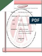 Diseño y Perfiles de Puestoshh (1) (1)