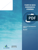P02 Disponibilidades HIdricas Rev01