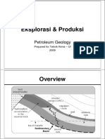 4. Petroleum Geology