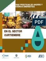 Fonam - Guìa de Bp de Ahorro y Eficicencia Energètica en El Sector Curtiembre