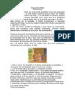 Caperucita Roja, 2° basico.docx