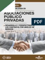Desarrollo y Perspectiva de los Contratos por Niveles de Servicio