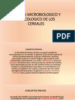 Analisis Microbiologico y Toxicologico de Los Cereales