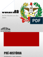 HISTORIA DE SANTA CATARINA.pdf