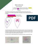 Embrio S. Cardiovascular