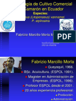 Clase02.ppt