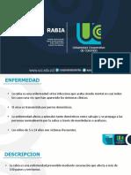 Rabia Salud Publi PDF