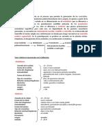 La_granulopoyesis.pdf