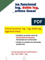 4. Forma Funcional Log Log