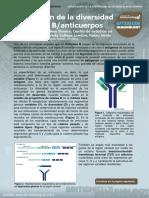 1. Generation of B-cell Antibody Diversity (Generación de La Diversidad de Céllulas B y Anticuerpos)