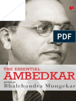 The Essential Ambedkar - Bhalchandra Mungekar