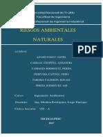 INFORME - CAPÍTULO N 01.docx
