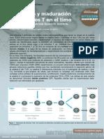 3. T-cell Development in Thymus (Desarrollo y Maduración de Las Células T en El Timo)