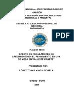 Lopez Tovar Fiorela