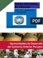 05a.- Desarrollo Comercio Exterior.perú