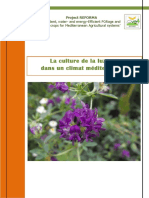 Lucerne Factsheet French 2604