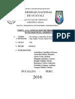 informe PIMENTAL.docx