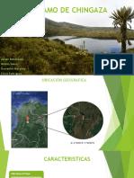 Paramo de Chingaza-ecologia [Autoguardado]