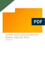 Sample Expert Background Report