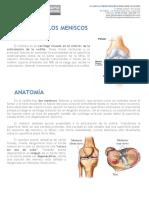 meniscopatia.pdf